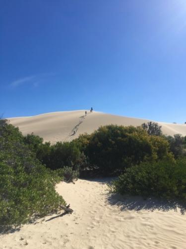 Fowlers Bay, amazing sand dunes!Travelling Family Australia