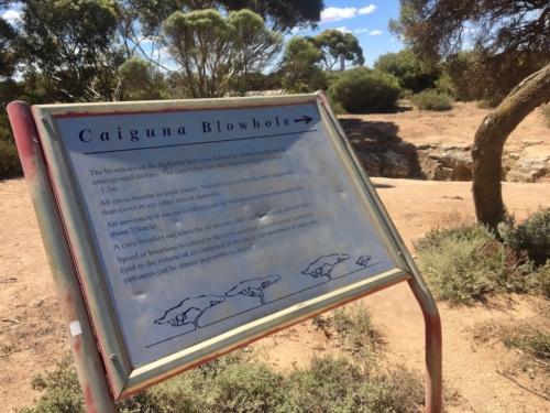 Caiguna Blowhole. Travelling Family Australia