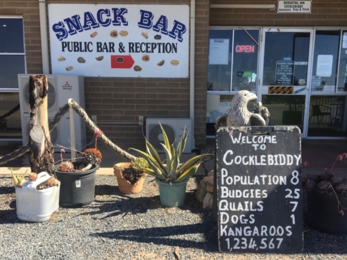 Cocklebiddy, a place we quickly had to escape due to the swarming bees!! Travelling Family Australia