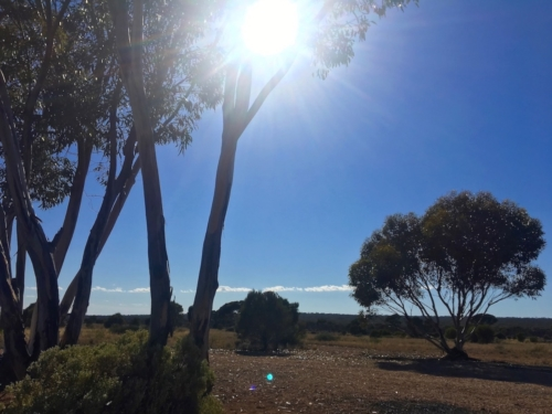 Scenery, crossing the Nullarbor.Travelling Family Australia